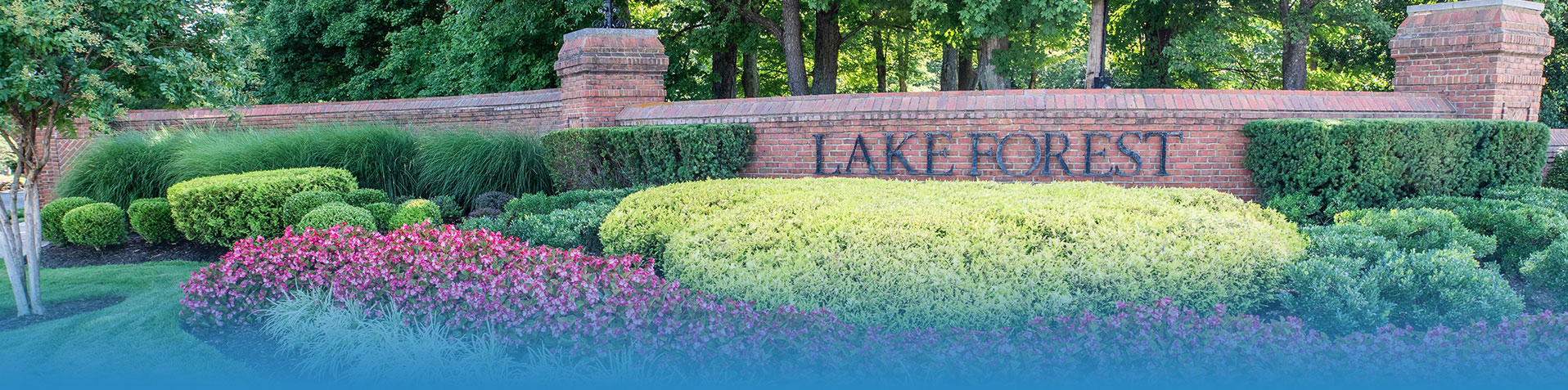 Wondrous Lake Forest Community Association Welcome To Lake Forest Home Interior And Landscaping Eliaenasavecom